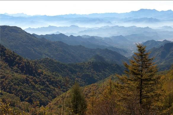 雾灵山风景