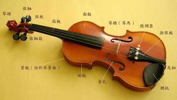 小提琴结构
