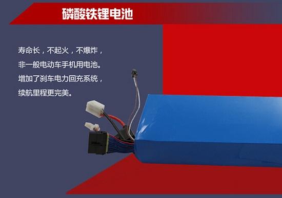 PATGEAR(贝其尔)电动滑板车的磷酸铁锂电池