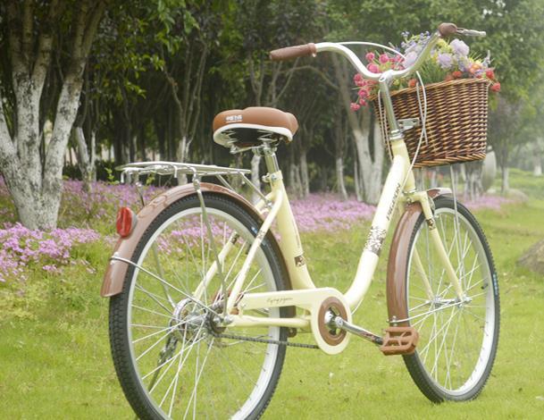 自行车选购问题详解