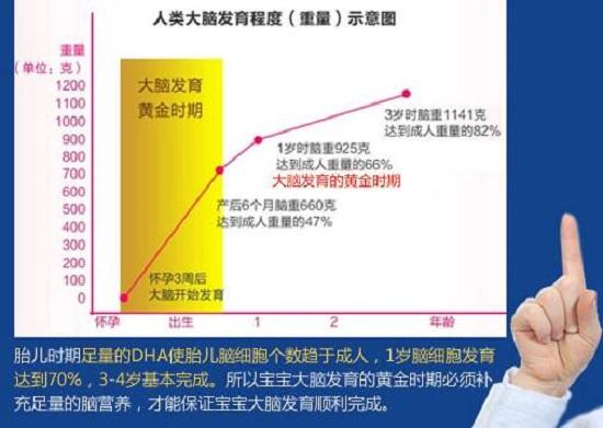 网上的DHA效果宣传图表(仅供参考)