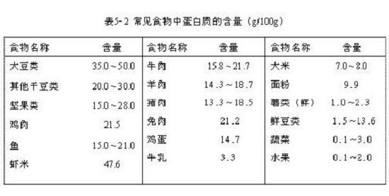 常见食物蛋白质含量表