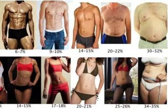 BMI目测法
