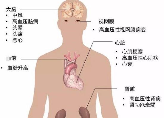 高血压引起的其他健康问题