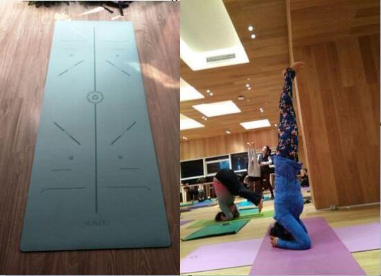 瑜伽训练者的训练体式图