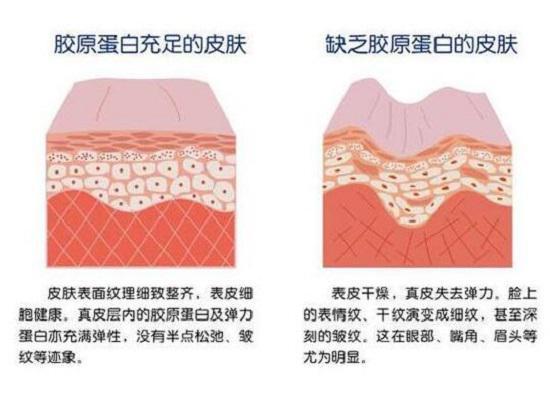 不同的皮肤状况