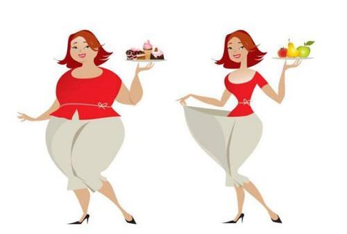 节食减肥很关键