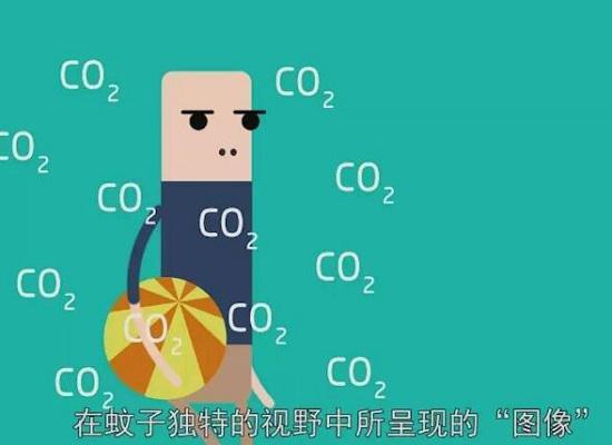 蚊子依靠二氧化碳寻找猎物
