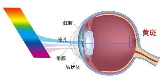 护眼灯选购五要素