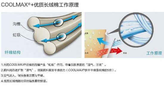 COOLMAX材料的吸湿原理
