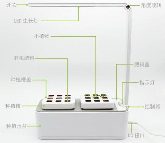 眼保姆植物种植台灯