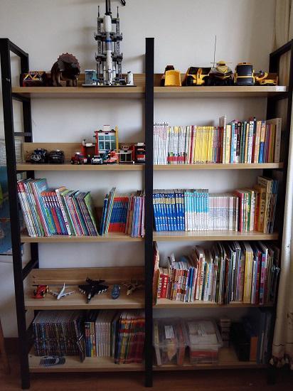 使用中的铁艺书架