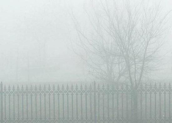 雾天可以跑步吗