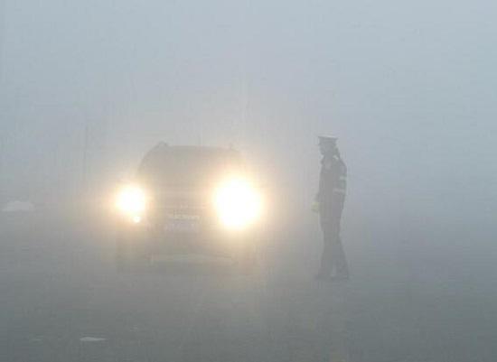 马路上的大雾