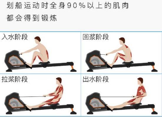 划船机的锻炼效果