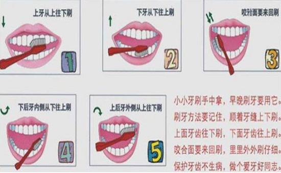 正确的刷牙方法