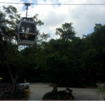 长隆野生动物世界的缆车和游览车