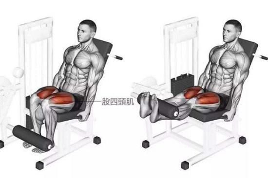 腿部屈伸训练器(伸腿动作)