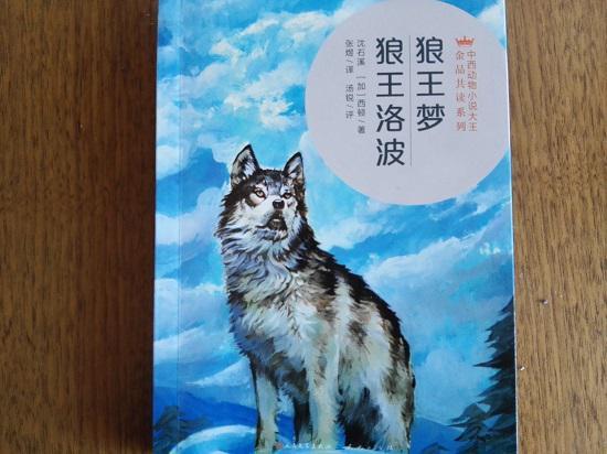 《狼王梦》读后感