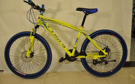 自行车和动感单车哪个更好