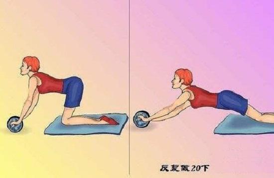 健腹轮的用法