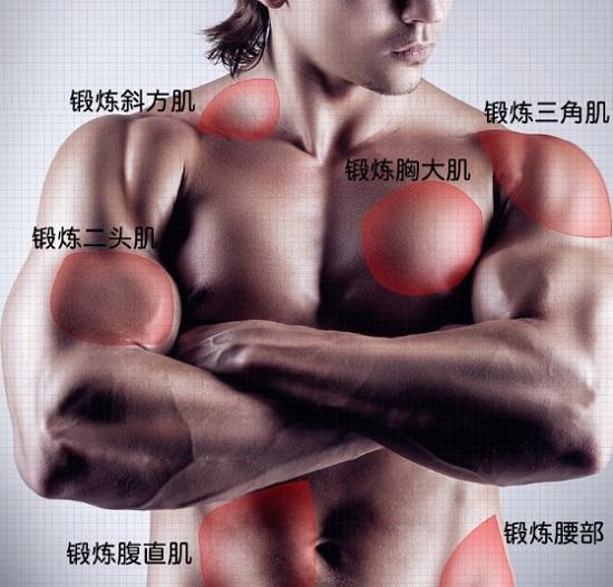 增肌器材推荐