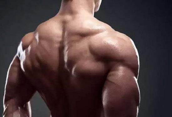 三角肌增肌方案