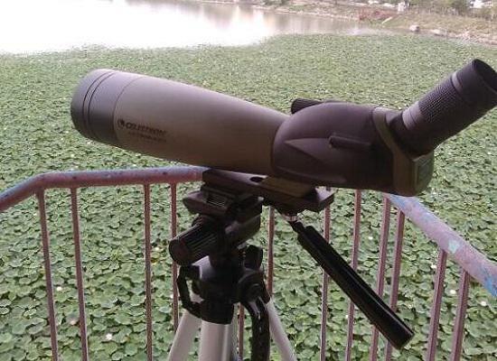 观鸟望远镜